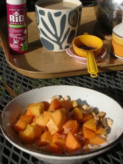 Apricotbreakfast